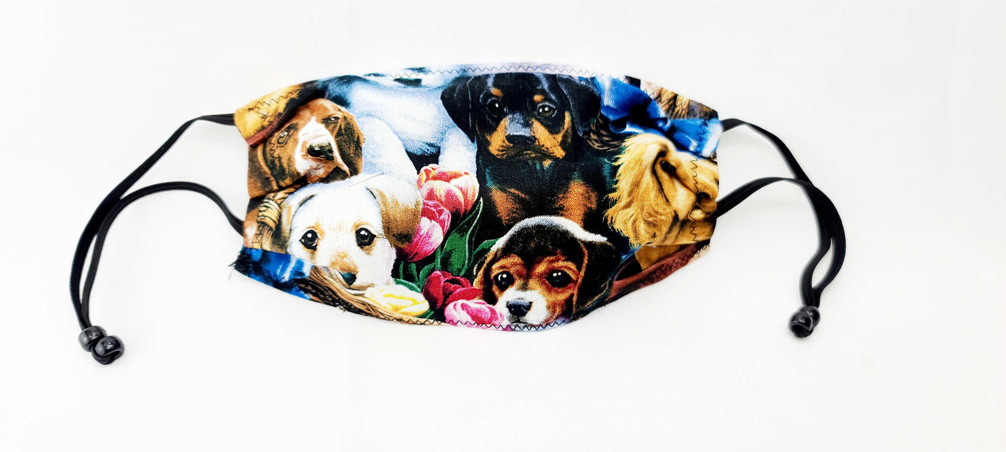 Dogs1_Front